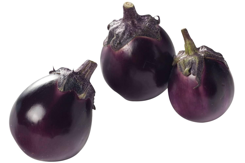 aubergine groente
