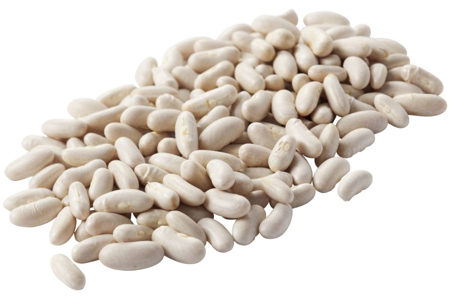 Dutch white beans 500gr piece 1